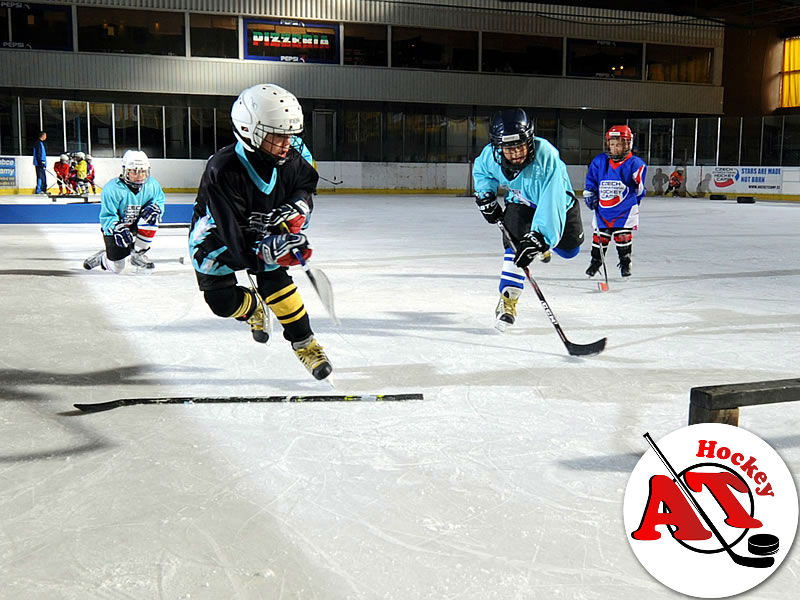 Координация в хоккее