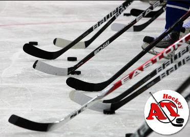 Виды хоккейных клюшек