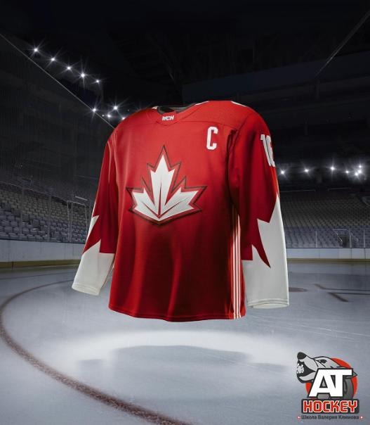 История и развитие канадского хоккея