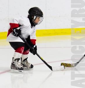 obychenie-detey-hockeuy-athockey.ru