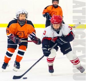 Обучение детей хоккею