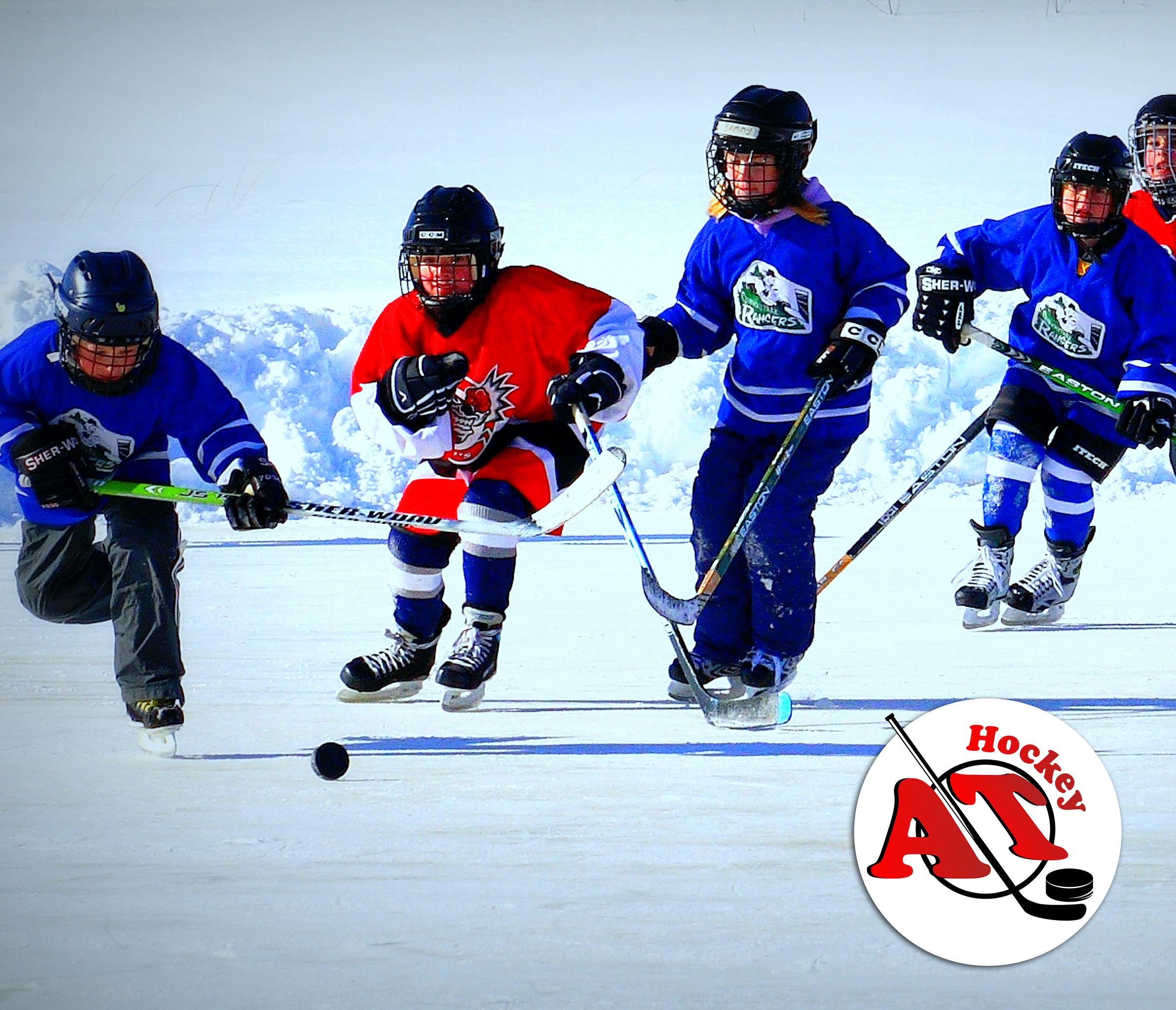 Стоит ли отдавать ребенка в хоккейную секцию?