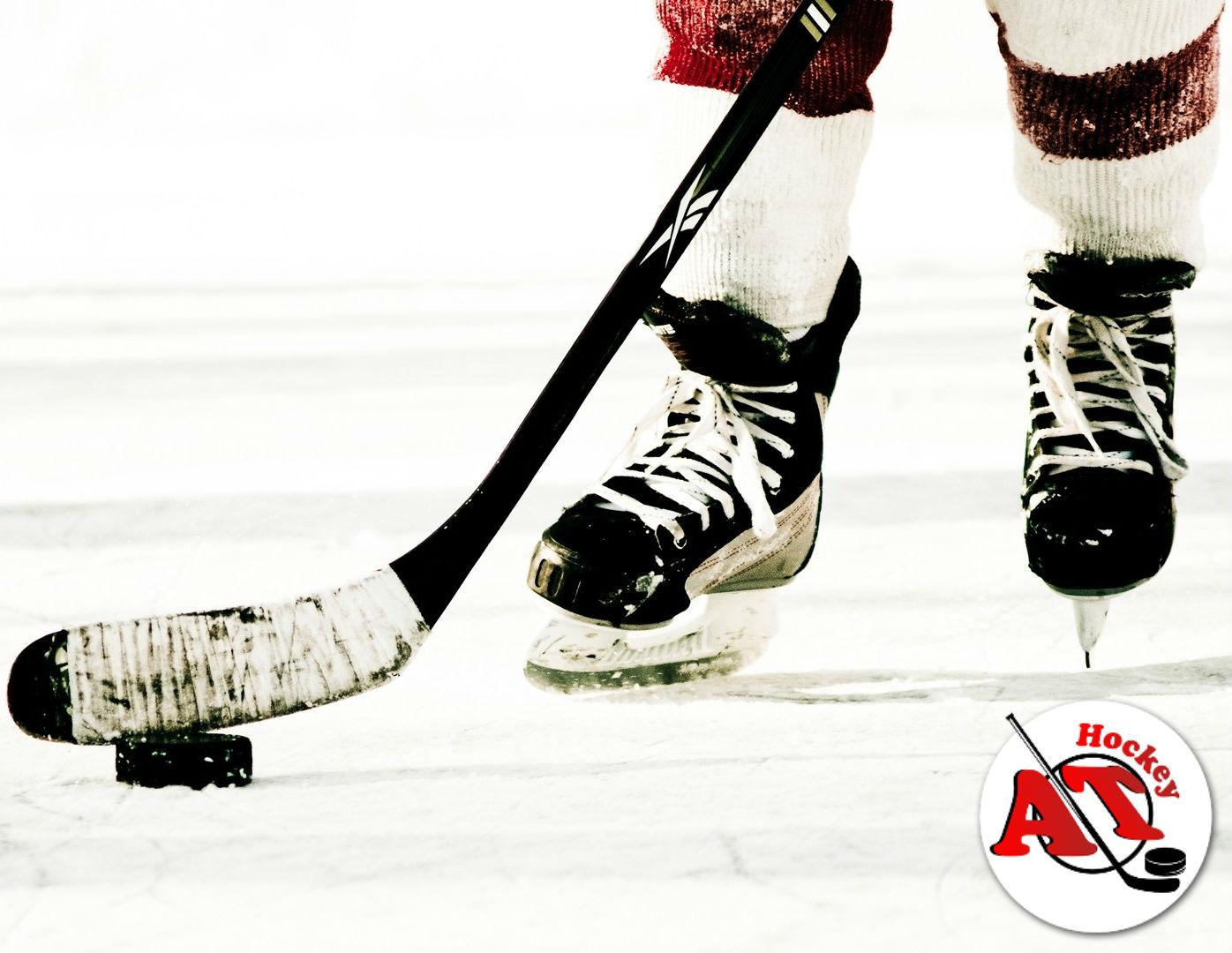 Техника владения клюшкой в хоккее