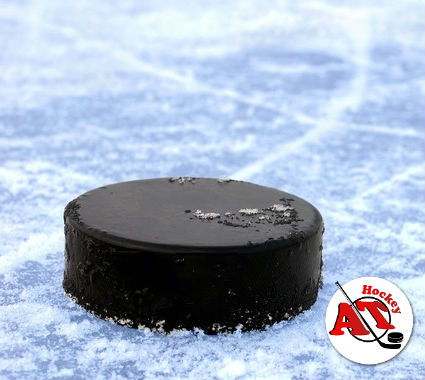 Особенности шайбы в хоккее