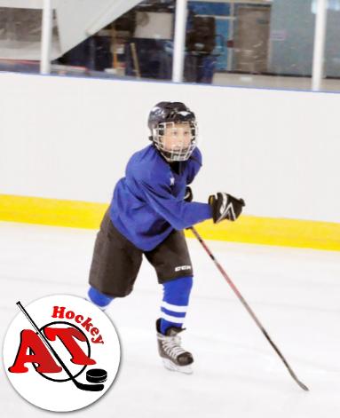 Развитие выносливости в хоккее