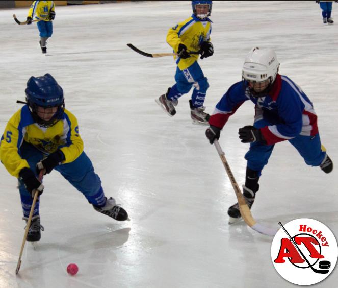 Какие бывают виды хоккея?