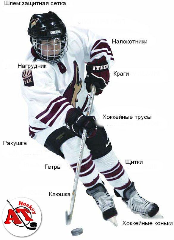 Как выбрать хоккейную экипировку?