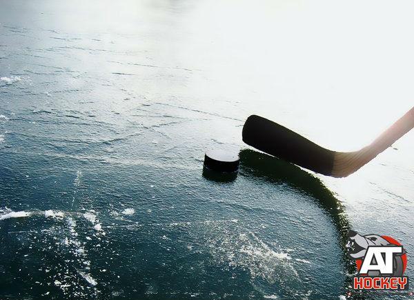 Все о хоккейном льде